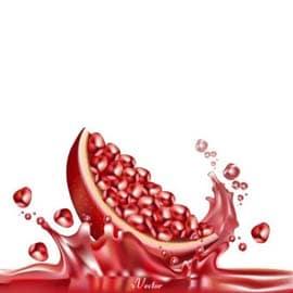 دانلود رایگان وکتور برش انار Download Yalda Night Decoration Pomegranate Melon Drawing vector