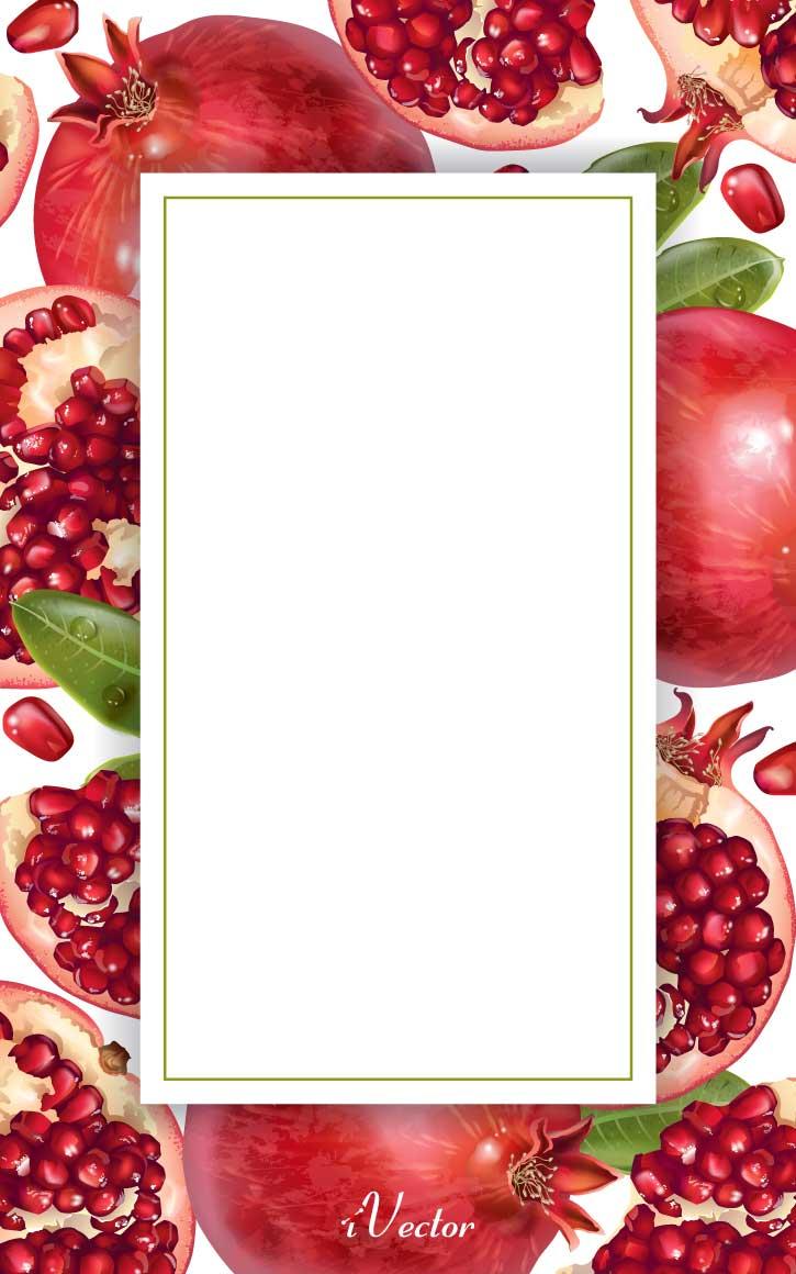 دانلود کادر وکتور طرح انار Pomegranate Border Vector Image