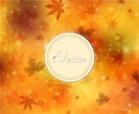 وکتور طرح برگ های پاییزی autumn leaves vector