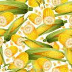 پترن وکتور با طرح ذرت Corn Pattern Free Vector Art