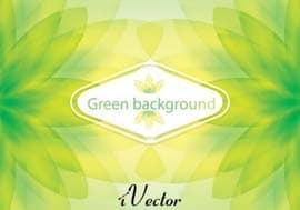وکتور زمینه سبز رنگ green vector background