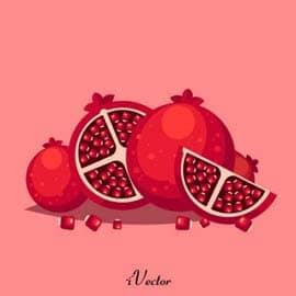 وکتور انار نقاشی pomegranate background vector