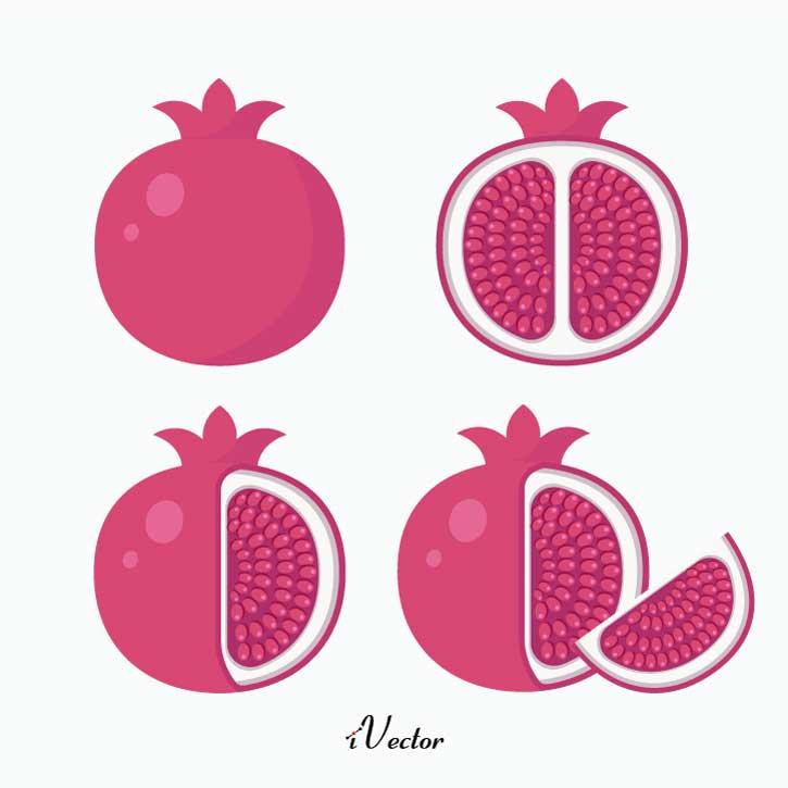 دانلود مجموعه وکتور انار Pomegranate vector free download