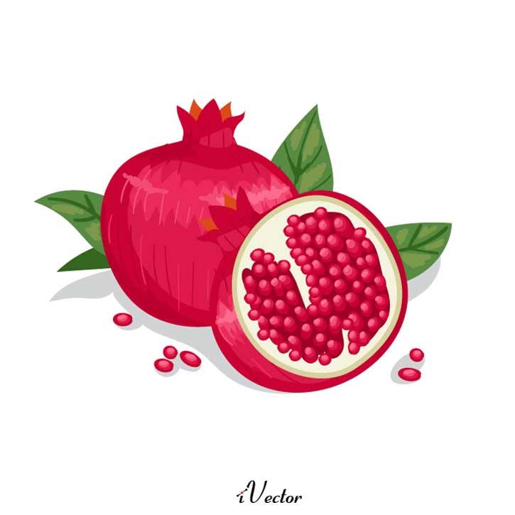 وکتور انار کارتونی Pomegranate vector download