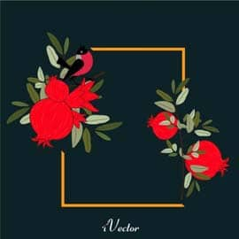 وکتور حاشیه طرح انار Pomegranate vector free download
