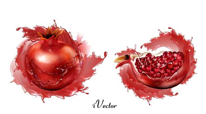 طرح وکتور انار شب یلدا Pomegranate Royalty Free Vector Image