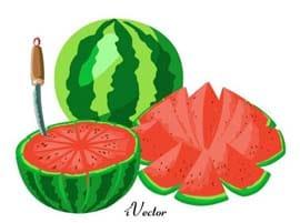 وکتور طرح برش هندوانه Watermelon Slice Vector Art