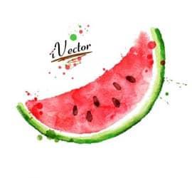 وکتور طرح برش هندوانه شب یلدا watermelon vector Stock Images
