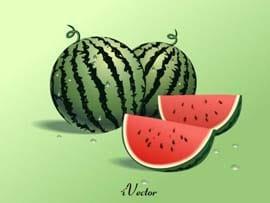 فایل وکتور هندوانه شب یلدا Watermelon Vector Image
