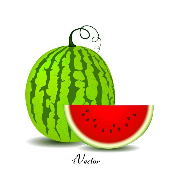 وکتور طرح هندوانه Watermelon Vector