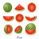 دانلود طرح برش های هندوانه Watermelon Slice free Vector Art
